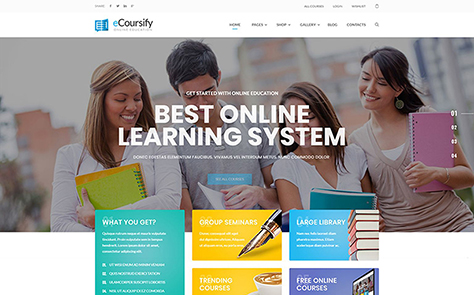 ECoursify - LMS for Online Courses WordPress Theme