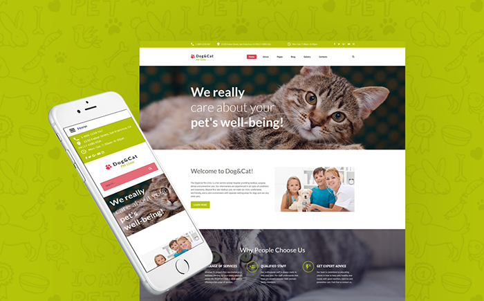 Cat - Pet Clinic Responsive Joomla Template