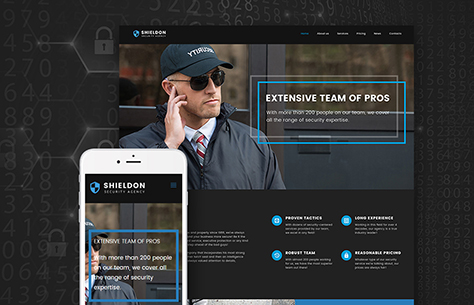 6 Best Security WordPress Themes To Stand Out With Your Biz