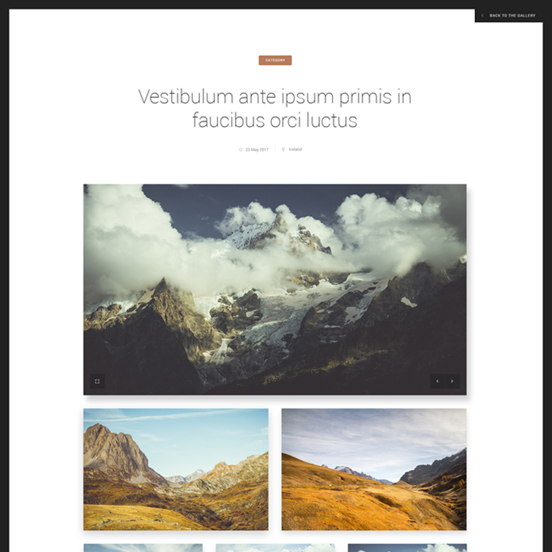 Laterna Photography Website Template